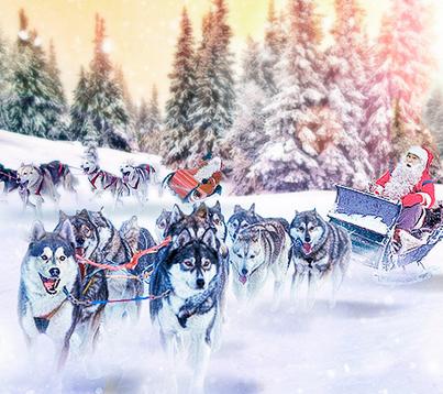 Конкурс «Снежная гонка» от FreshForex